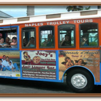 Trolley-bus-pic.jpg